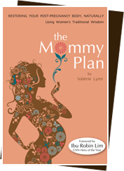 the-mommy-plan